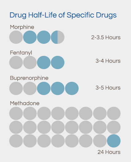 drug half-life specifics
