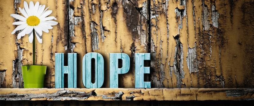 The Healing Power of Hope in Florida Addiction Recovery